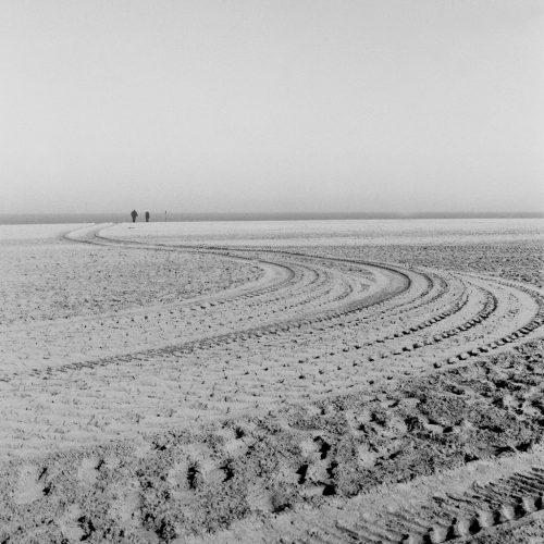 la-plage-bernard-descamps-deauville-2016