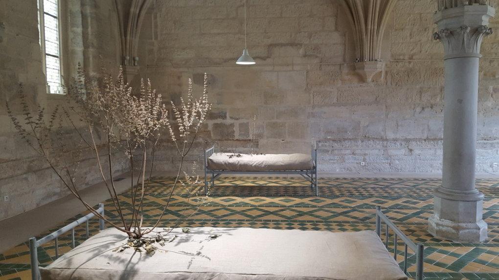 Le paysage introspectif de Stéphane Thidet à l'abbaye de Maubuisson