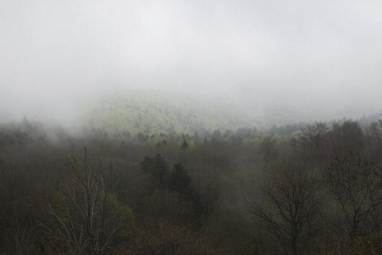 paysage-04