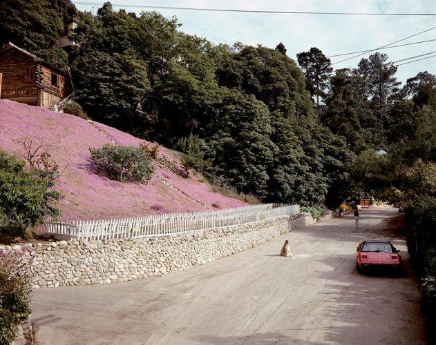 Joel-Sternfeld-Rustic-Canyon,-Santa-Monica,-California,-May-1979