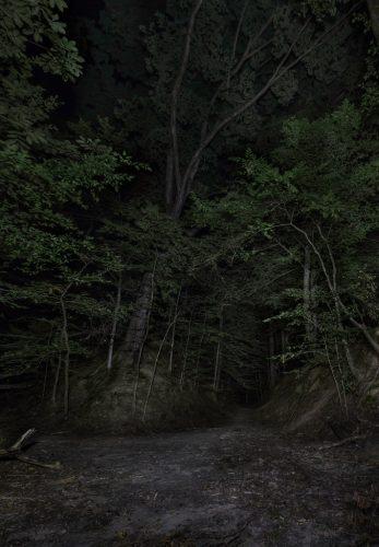 Sunken-Trace.-Claiborne-County,-Mississippi,-2015
