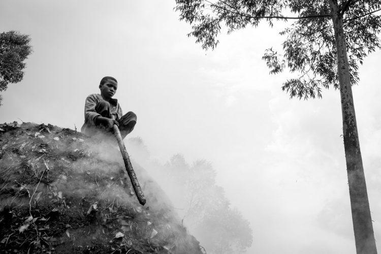 01-Baumann_Leonora_2016_RDC_Bois_01