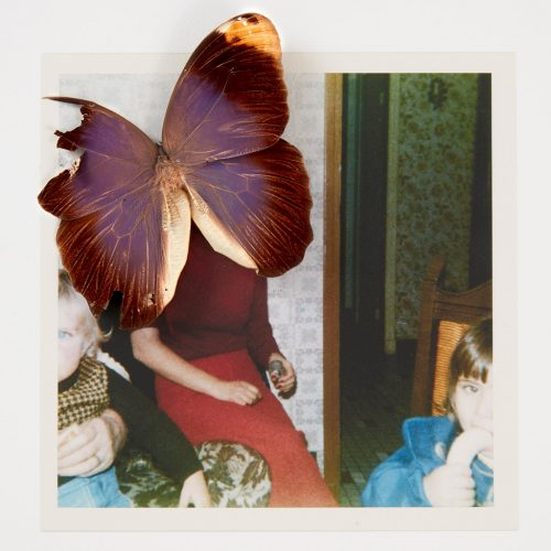 Albums-de-famille--©Soraya-Hocine-(4)