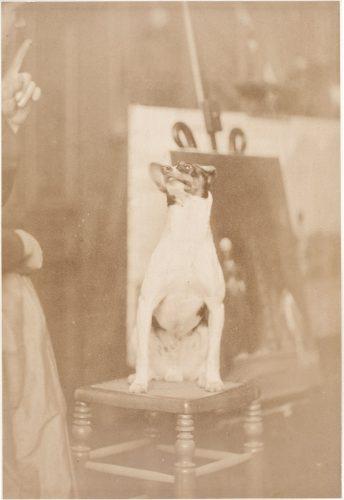 01.-Le-chien-du-peintre-Gerome-dans-l'atelier---PHO-2003-4-25