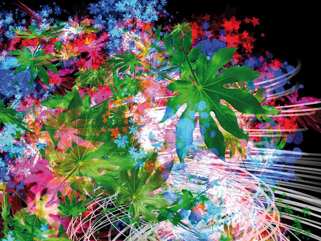Flower Power à Chaumont sur Loire – Saison 2017 #DigitalArt