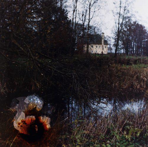 12-CraterBogLeavesPasschendaeleMemorialMuseum...ZonnebekeBelgium2014_76x76cm