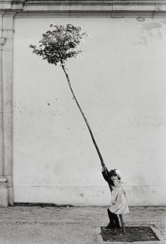 Petite-fille,-petit-arbre,-1981-∏-Sabine-Weiss_Collections-Musee-de-l'Elysee