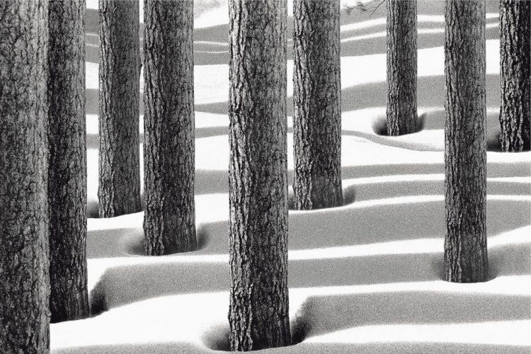 ©Abbas-Kiarostami-Snow-White