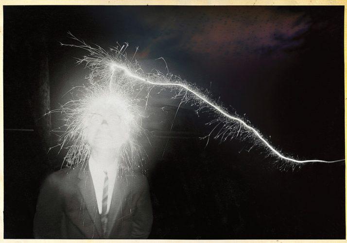 2_WEB_©PeterBrownLeighton_PlutoniumBast