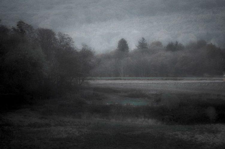 4_WEB_©DanielAlbin_Paysages