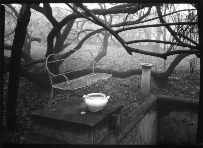 Josef-Sudek-«-From-the-cycle-A-walk-in-the-magic-garden-»-1954-©-Josef-Sudek-Gabina-Fárová-photo-Frac-Aquitaine-_-83-51-5-1024x746