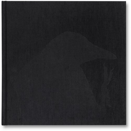 Ravens-front