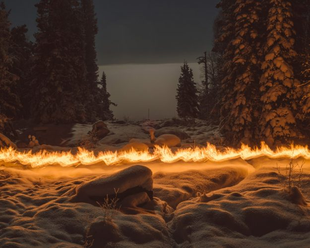 ©-Terje-Abusdal_Slash-&-Burn_8