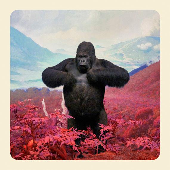 Londres : Ouverture de l'expo Mountains of Kong