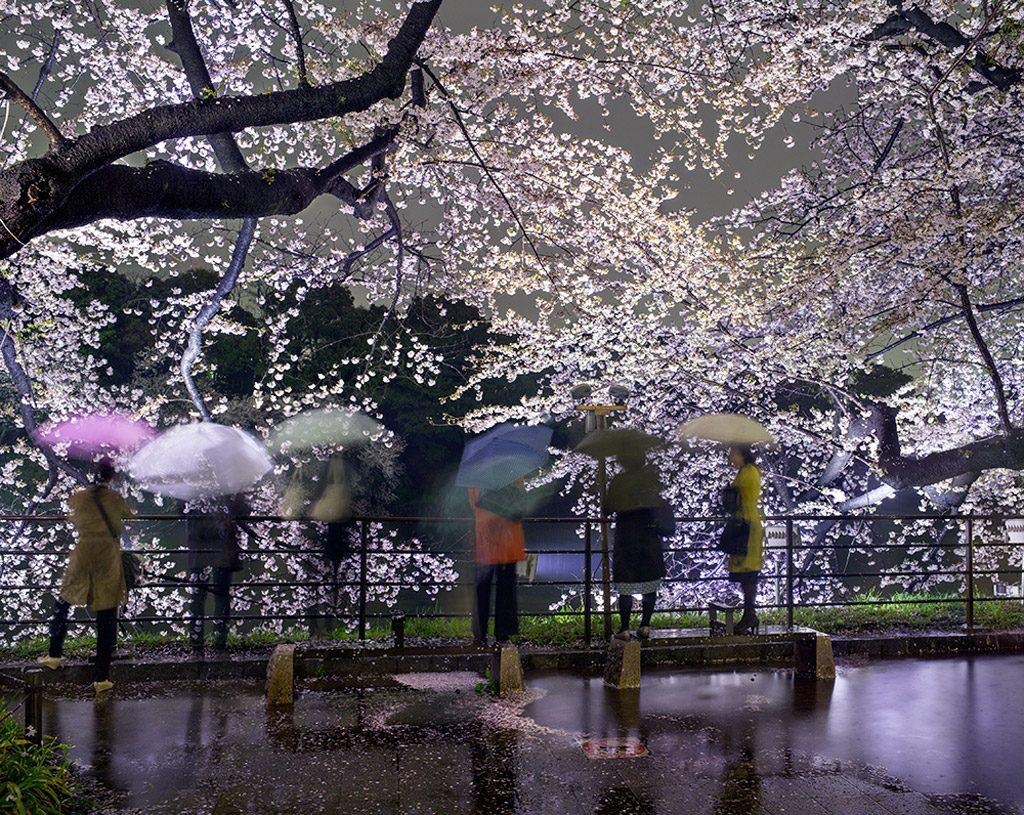 New York : Ouverture de l'exposition «Tokyo» de Matthew Pillsbury