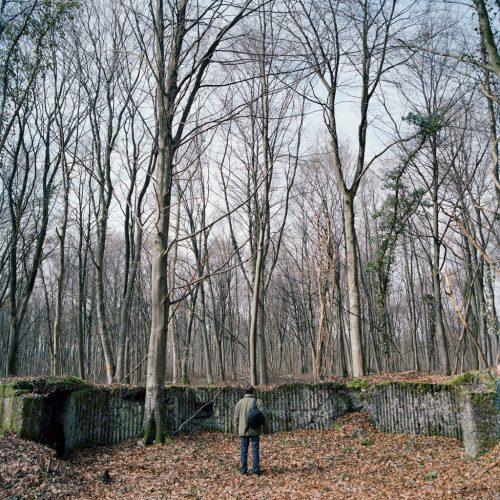 Position-d'artillerie-allemande,-bois-de-Dommartin-la-Montagne,-février-2013-©-Comme-on-Peut-2017