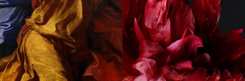 RIEHL_Michel_1423-02_Peintures-d-etoffes---fleur-pivoine_800px