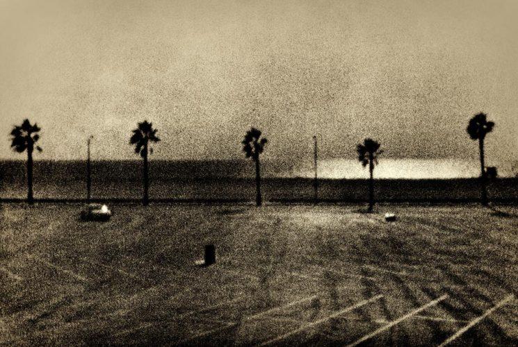 Zuili-Santa-Monica-Beach