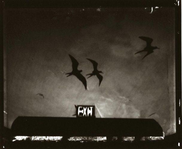 ©-Sarah-Moon,-Exit,-1988