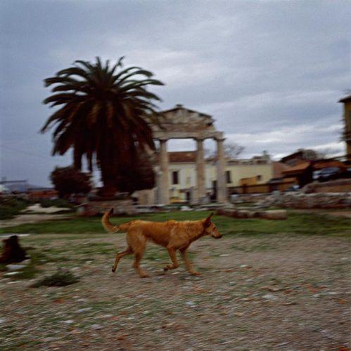 Agora-romaine,-Athènes,-2008-©-Didier-Ben-Loulou