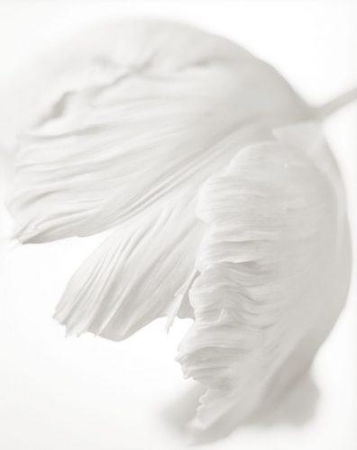 08-Yumiko-Izu