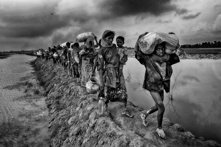 ©-Mushfiqul-ALAM-BD