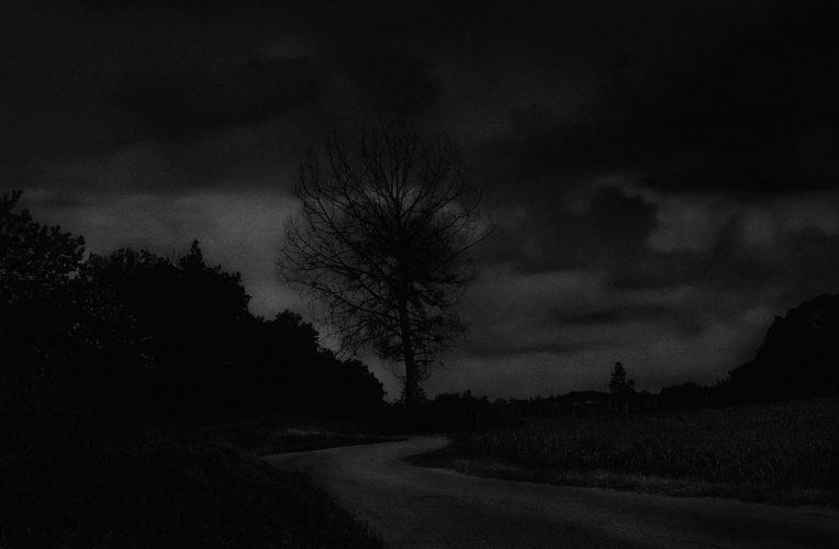 arnault-joubin-paysages-naturels-