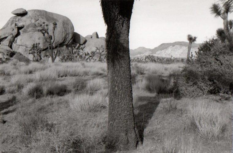Bernard-PLOSSU---Californie-1980