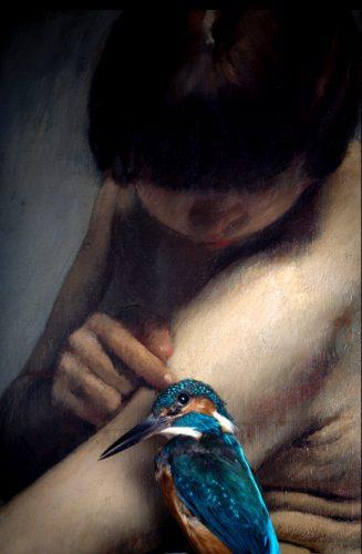 Les-Oiseaux-Disparus-©-Magali-Lambert-02