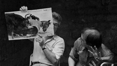 Carte blanche à Arnaud Bizalion : 74-94 – les années noires et blanches, la lumière et l'ombre