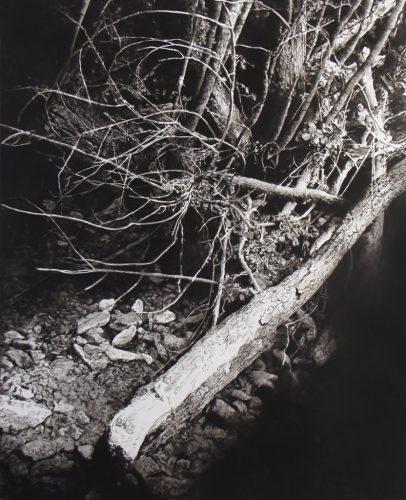 3-arbre-brisé-2,-Rials,-160-x-130cm,-2017