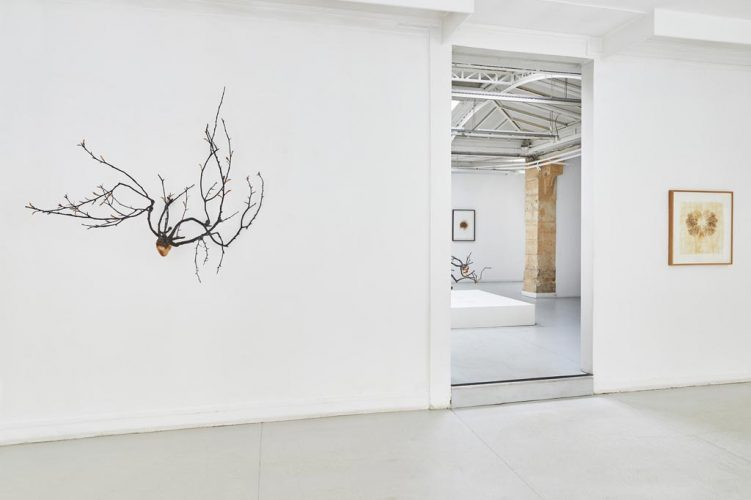 (1)-Vue-d'exposition,-Javier-Pérez,-Pulsiones---Pulsaciones,-du-23-mars-au-4-mai-2019,-courtesy-Galerie-Papillon-©-Jean-Christophe-Lett