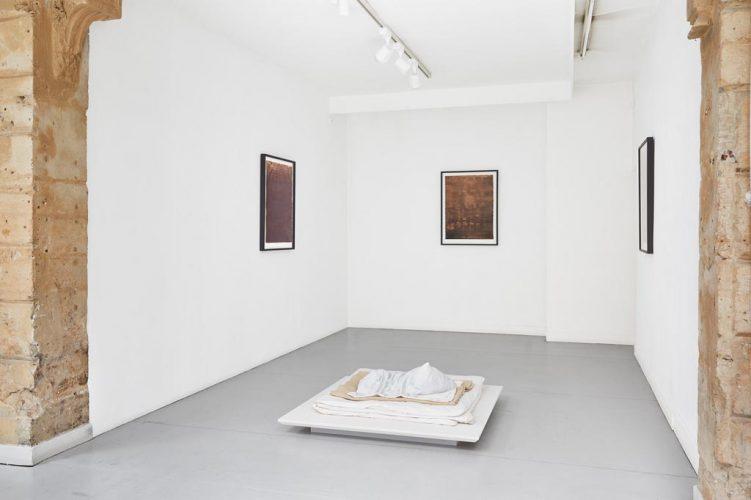 (20)-Vue-d'exposition,-Javier-Pérez,-Pulsiones---Pulsaciones,-du-23-mars-au-4-mai-2019,-courtesy-Galerie-Papillon-©-Jean-Christophe-Lett