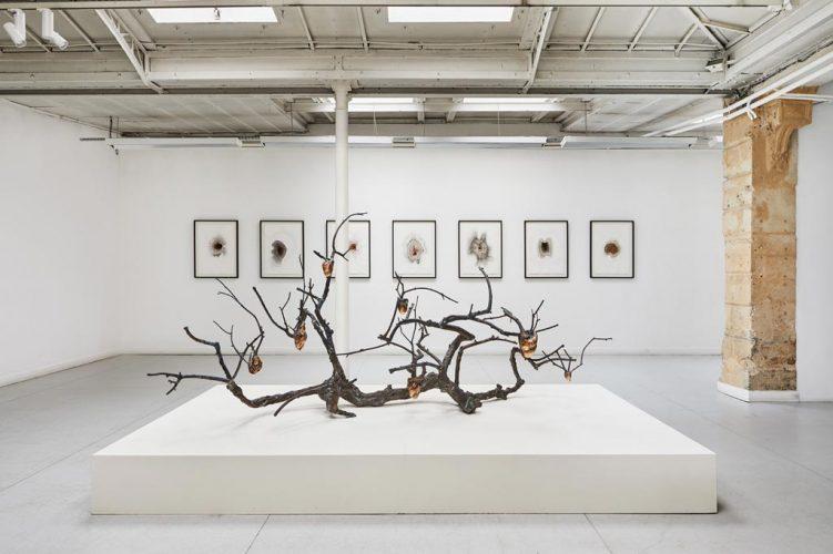 (4)-Vue-d'exposition,-Javier-Pérez,-Pulsiones---Pulsaciones,-du-23-mars-au-4-mai-2019,-courtesy-Galerie-Papillon-©-Jean-Christophe-Lett
