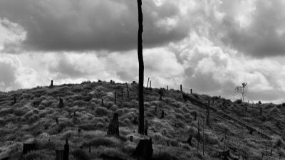 Brésils, de l'Amazonie aux bidonvilles<br> Ludovic Carème à la Friche Belle de Mai