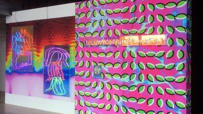 Rencontre avec Pierre Pauze, Révélation Art numérique 2019 ADAGP-Le Fresnoy