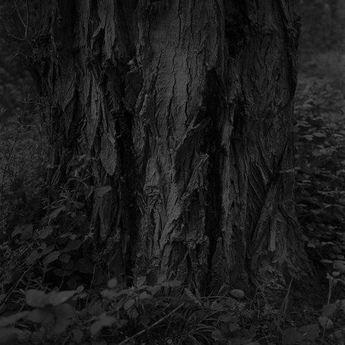 02-©-Adrien-Basse-Cathalinat--Résidence