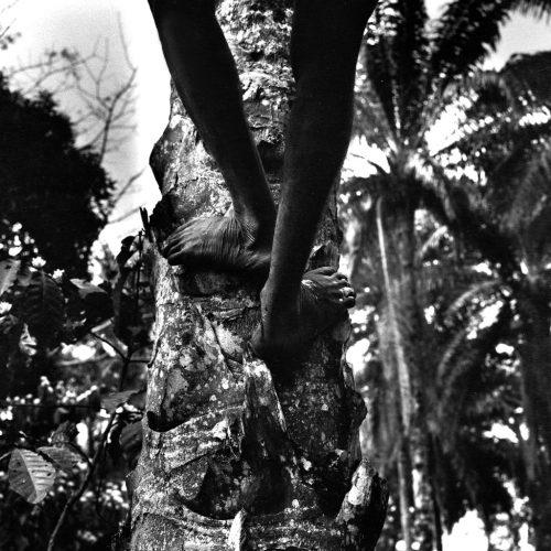 Centrafrique-1995---pygmées-Aka-1