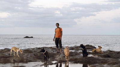 Le Prix SAM pour l'art contemporain annonce les finalistes de sa 11ème édition