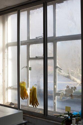 Tillmans_Wet-Room,-Gloves
