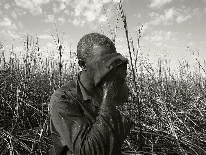 Desmemoria, Les coupeurs de cannes à sucre à Cuba <br>Une exposition de Pierre Élie de Pibrac