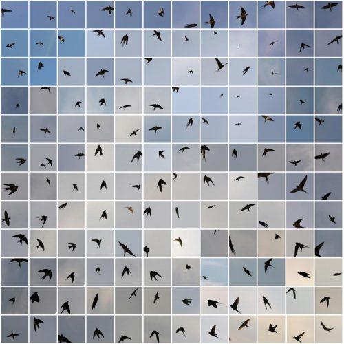 Le-Bleu-du-Ciel---maquette-(c)-Edouard-Taufenbach