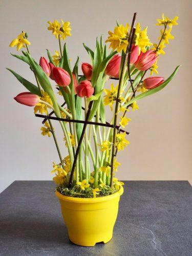 20200321-HAUTEVILLE-LES-DIJON-5e-jour-de-confin-ement--tulipes-confinées--©-Patricia-Garcia-1