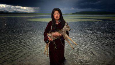 Le paradis nomade d'Hamid Sardar