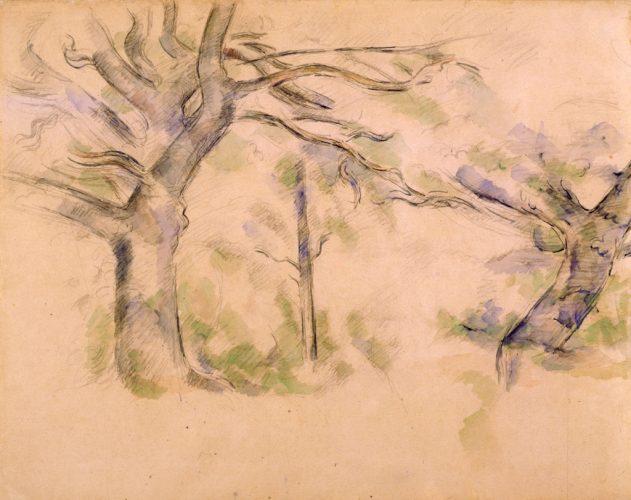 CollectionPrat-Cézanne---Les-grands-arbres