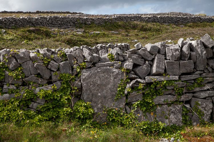 8---BvonConta-Aran-Islands-Inis-Mor-27-05-2019_MG_1835