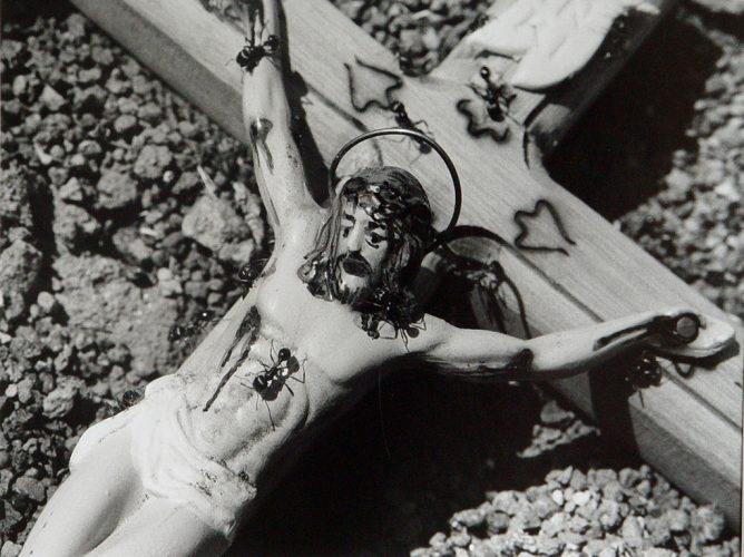 Ants-Christ-on-Cross