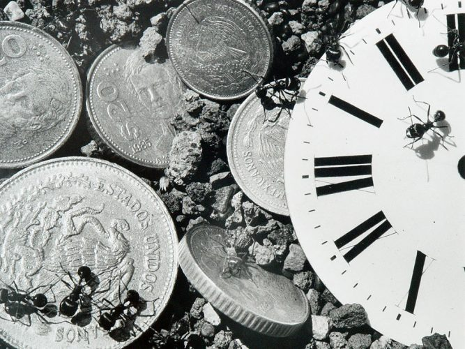 Ants.Coins+clock