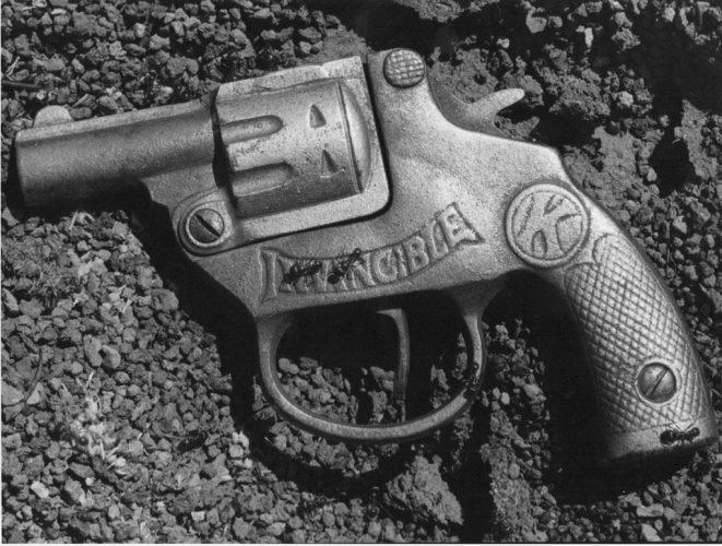 Ants+gun