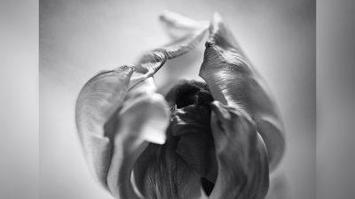 Carte blanche à Marion Scemama : Véronique Bourlon, Naissance d'un geste photographique